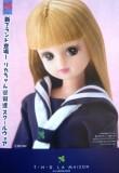 富士ヨット
